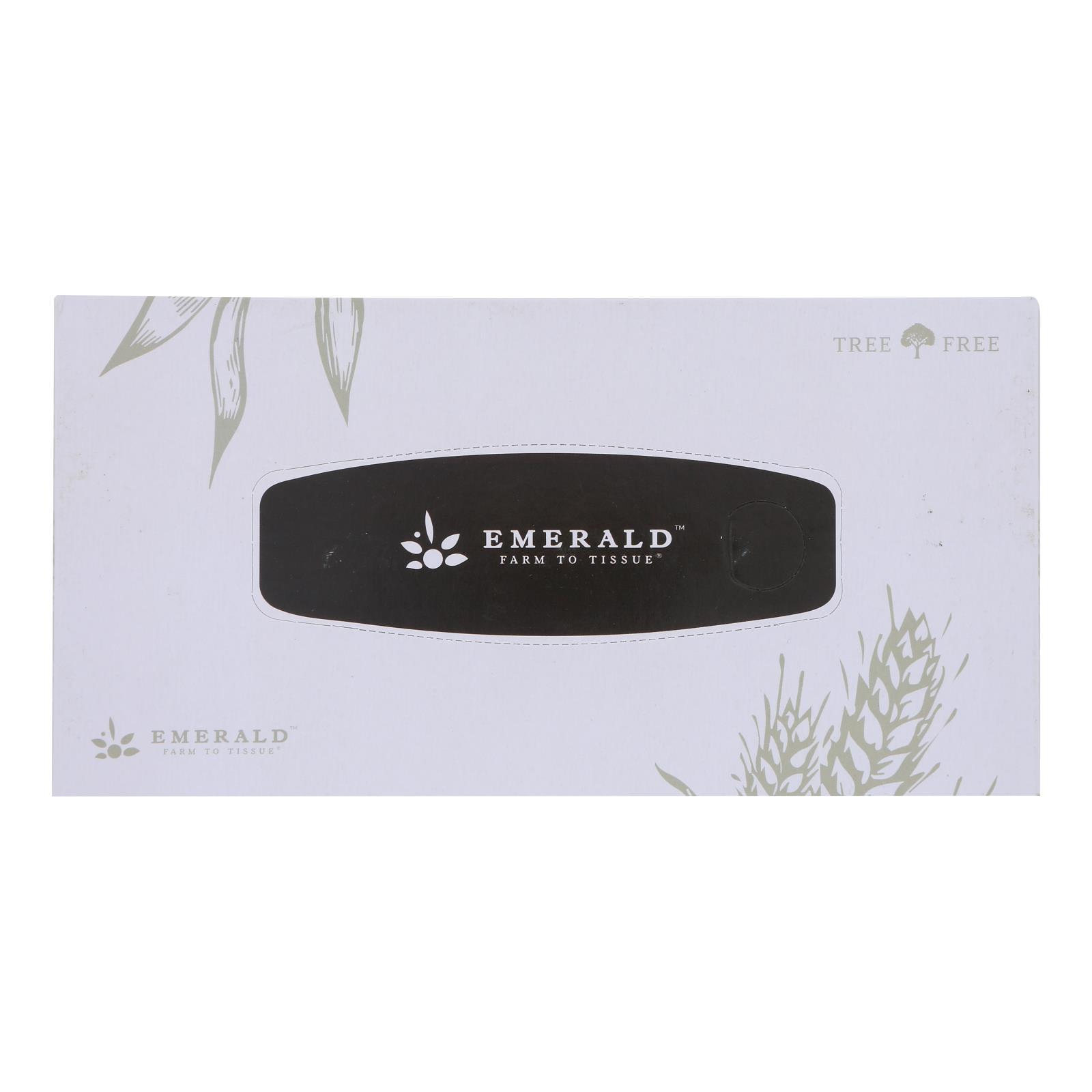 Emerald Brand - Facial Tissue 2 Ply Fltbx - CS of 30-1 CT